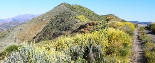 Una veintena de senderistas sexitanos subieron a Cerro Albita