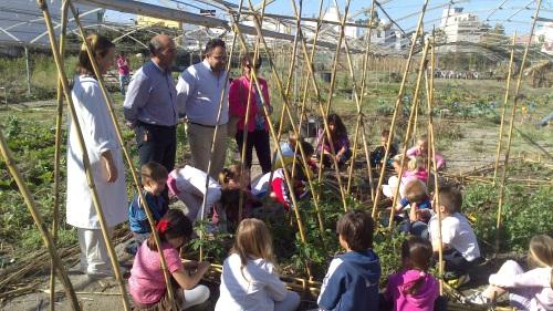 Los alumnos del Colegio Las Gaviotas de La Herradura participan en un huerto escolar ecologico