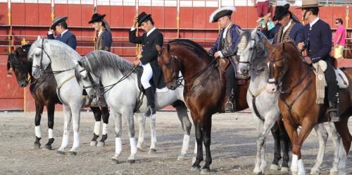 El arte del caballo llegó a Almuñécar