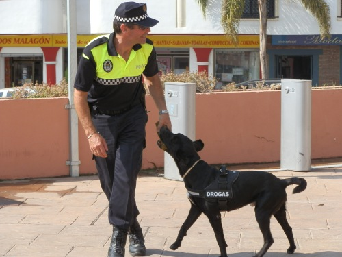 Unidad canina contra el menudeo de drogas y búsqueda de personas