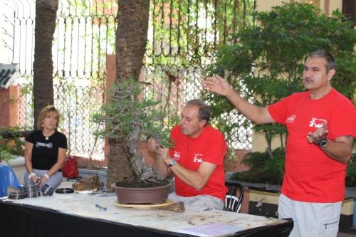 Interesante conferencia del gran maestro italiano del bonsái Giorgio Castagneri