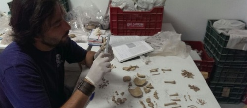Técnicos municipales catalogan diverso material arqueológico