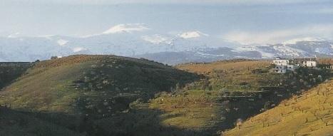 Bodega Barranco Oscuro, en la Alpujarra granadina