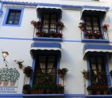 Mención especial concurso fachadas y patios