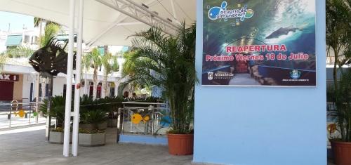 El viernes Almuñécar abrirá al público el acuario tras su costosa rehabilitación