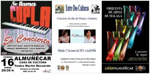Eventos organizados por Cultura del 16 al 18 de enero de 2015
