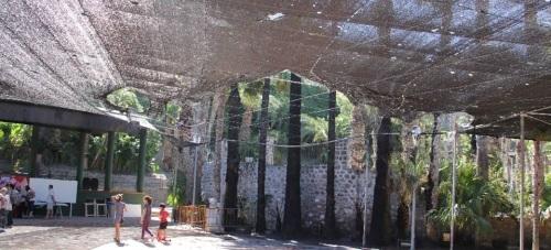 ZONA AFECTADA POR INCENDIO EN PARQUE EL MAJUELO  ALMUÑECAR 15 2