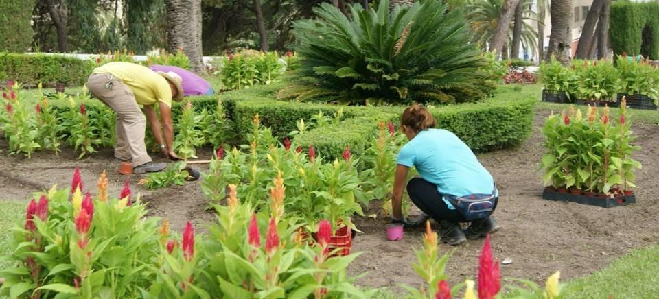 las concejal as de mantenimiento y parques y jardines