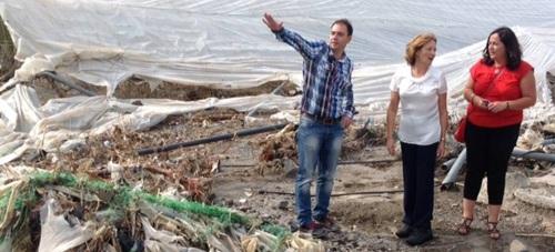La Junta reparará caminos dañados por las lluvias y habilitará ayudas para restaurar invernaderos en Granada y Almería