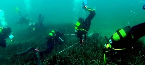 Medio Ambiente inicia una nueva campaña para el seguimiento de las praderas de Posidonia oceánica