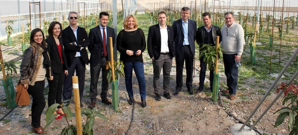 La alcaldesa y el delegado de Agricultura visitan la finca experimental de subtropicales de la empresa 'La Caña'