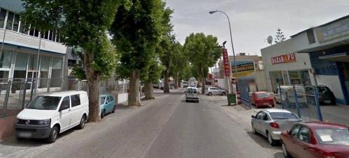 La concejalía de Parques y Jardines inicia la poda del arbolado del 'Kilómetro 1'