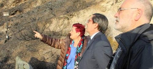 Diputación traslada su respaldo a los municipios afectados por el incendio en la Alpujarra
