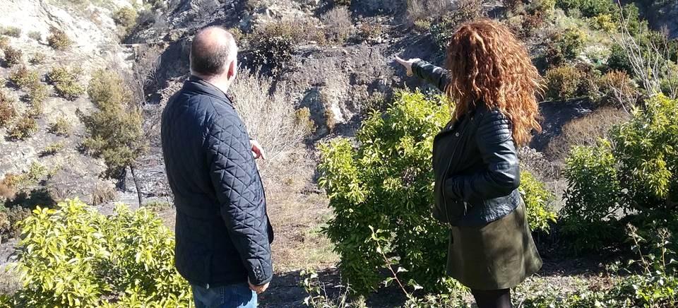 El presidente de Mancomunidad visita la zona afectada por el incendio de Los Guájares