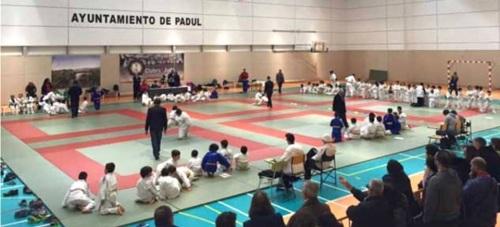 Los Judokas sexitanos consiguieron casi una veintena de podios en Padúl