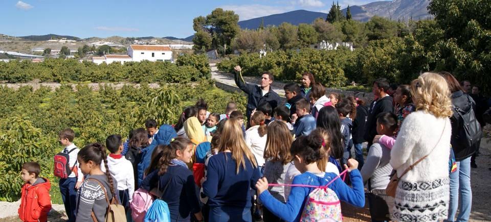 Alumnos de primaria conocen los frutos subtropicales de mano del 'Grupo La Caña'.jpg
