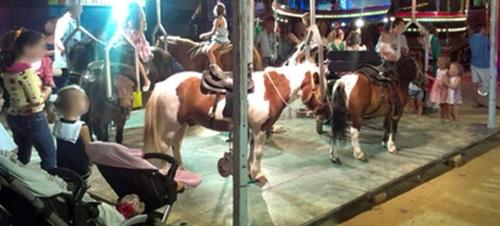 En las fiestas de San José de La Herradura no habrá atracciones con ponis
