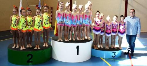 Más de 600 gimnastas de la provincia se dan cita en Salobreña