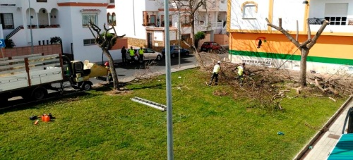 Ciudadanos Motril consigue que comiencen los trabajos de mantenimiento del jardín de la calle La Mancha