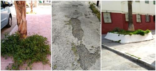 IU pide el arreglo y adecentamiento del barrio de La Paloma
