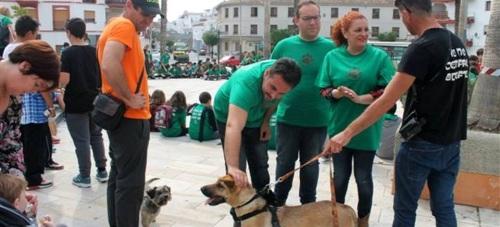 Salobreña celebra una fiesta con los perros como protagonistas