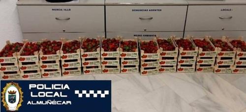 Decomisados 78 kilos de fresas en Almuñécar
