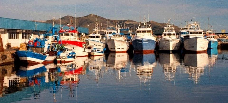 El Grupo de Acción Local de Pesca Costa Granada Afirma que las ayudas al sector pesquero siguen sufriendo  El BLOQUEO DEL MINISTERIO DE PESCA