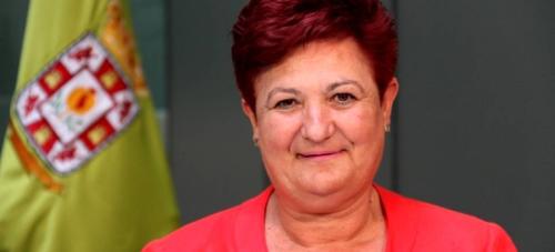 Todos los ayuntamientos firman la concertación con la Diputación, salvo Güéjar Sierra