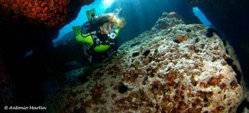 Celebrado el Campeonato de Andalucía de Fotografía Submarina en La Herradura