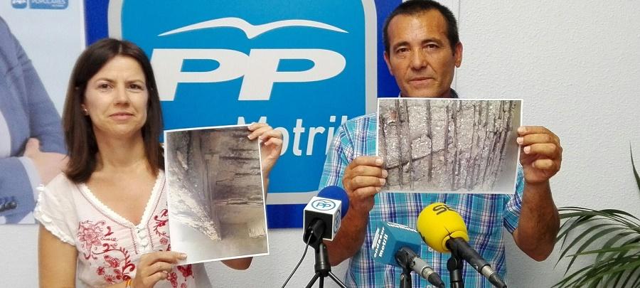 El PP advierte del peligro de derrumbe de la Rambla de Villanueva a su paso por Torrenueva