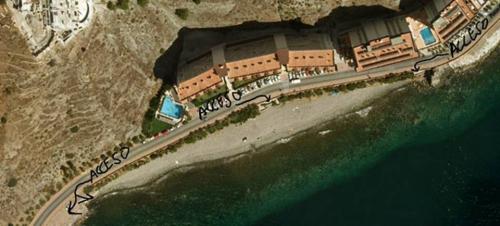 Izquierda Unida de Almuñécar pide al gobierno municipal que reconsidere la propuesta de una playa para perros
