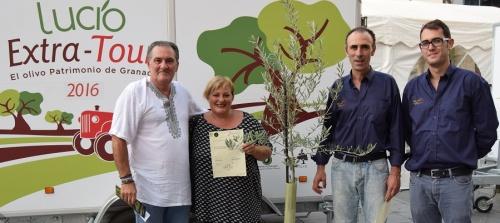 Motril acoge la exposición itinerante sobre el olivo 'Lucio, Extra-Tour'