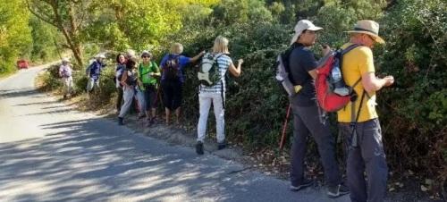 senderistas-sexitanos-recorrieron-la-ruta-prados-de-lopera-jayena