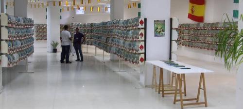 casi-1-800-ejemplares-participan-en-el-xxx-concurso-ornitologico-ciudad-de-almunecar
