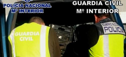 desarticulada-una-red-criminal-que-robaba-productos-hortofruticolas-en-la-costa-de-granada-malaga-y-almeria