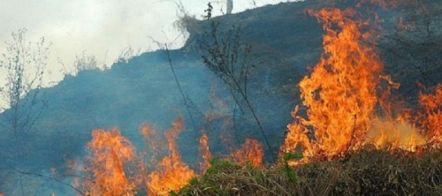 agentes-de-medio-ambiente-difunden-hoy-en-los-institutos-de-salobrena-la-campana-no-te-quemes