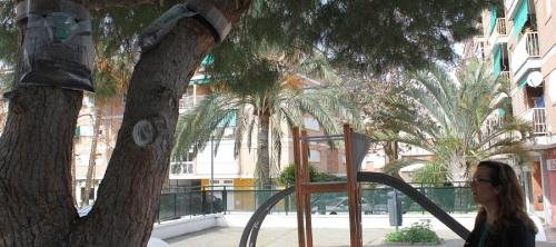 la-concejalia-de-parques-y-jardines-de-motril-realiza-un-plan-de-control-de-plagas-para-la-oruga-procesionaria