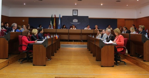 El Pleno modifica la forma de gestión del servicio público de grúa y el inicio de la licitación del contrato