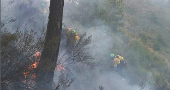 Nivel 1 del Plan Infoca por el incendio en el paraje Tajo de los Vados de Salobreña