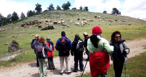 Ruta de senderismo por la sierra de Baza