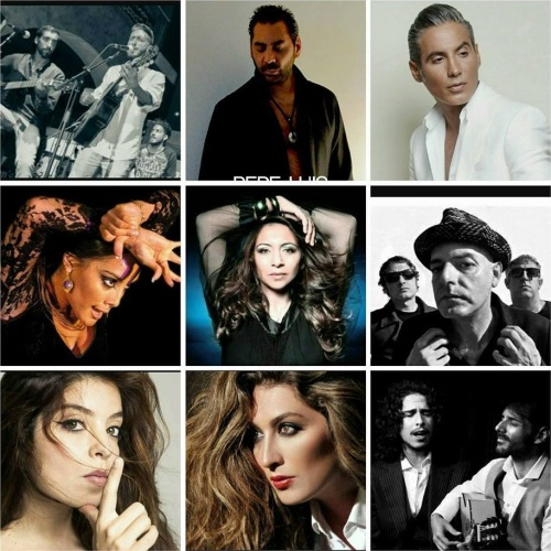 Concierto de grandes artistas flamencos por ACOMPALIA