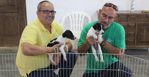 El Ayto. de Motril inicia una campaña de concienciación y adopción de mascotas del albergue municipal