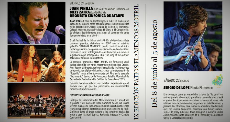 Patios Flamencos (2)