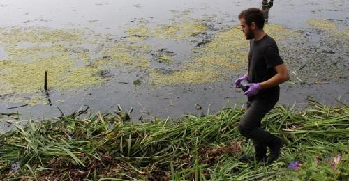 Investigadores de la UGR realizan un muestreo en las lagunas de la Charca de Suárez dentro del proyecto 'METAS_