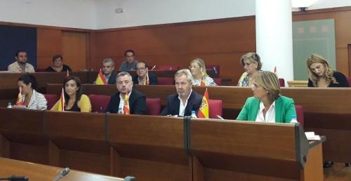 Apoyo unánime para que se retire normativa de Ayuda a Domicilio de la Junta de Andalucía