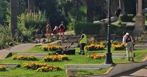 Parques y Jardines realiza trabajos de mejora en el barrio de Las Angustias (2)