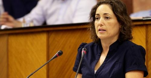 Mari Carmen Pérez, diputada Andaluza de Izquierda Unida