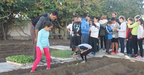 Alumnos de Primaria ponen en marcha un huerto escolar y una compostera