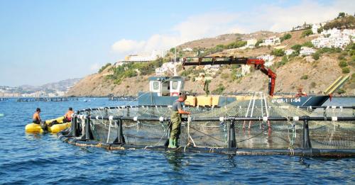 La Junta abre la convocatoria de ayudas 2018 a la acuicultura sostenible, dotada con 10,6 millones de euros.png