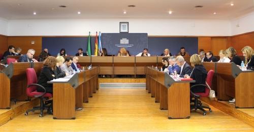 Pleno del Ayuntamiento de Motril 26 de enero 2018